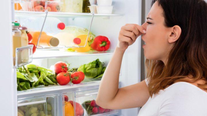 Как избавиться от запаха в холодильнике быстро в домашних условиях