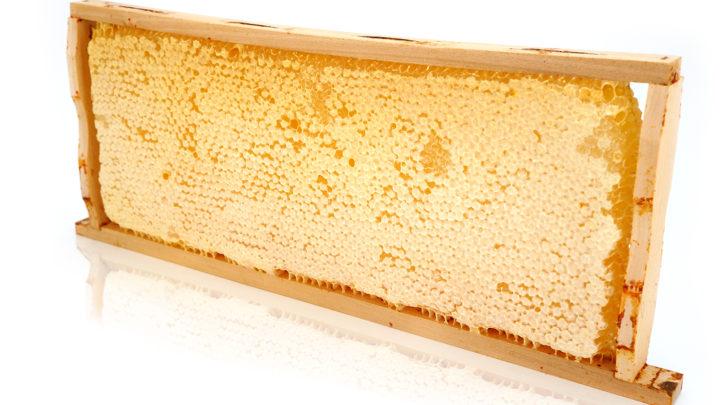 Мед в сотах, польза и вред, можно ли глотать воск