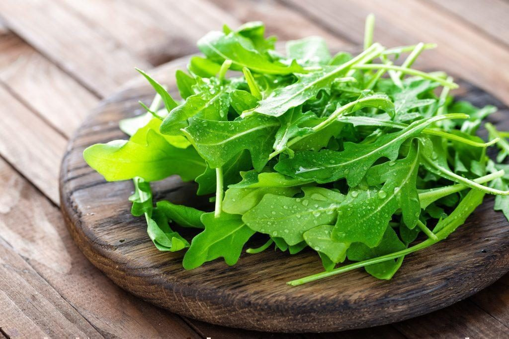 руккола салат польза и вред